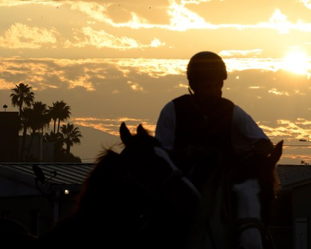 Caption:  Sunrise at Los Alamitos. California Chrome with Victor Espinoza works at Los Alamitos Racetrack in California on Oct. 25, 2014.
