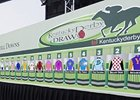 The Field for the 2011 Kentucky Derby.