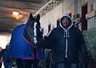 NYRA to Close Aqueduct Barns for Five Months