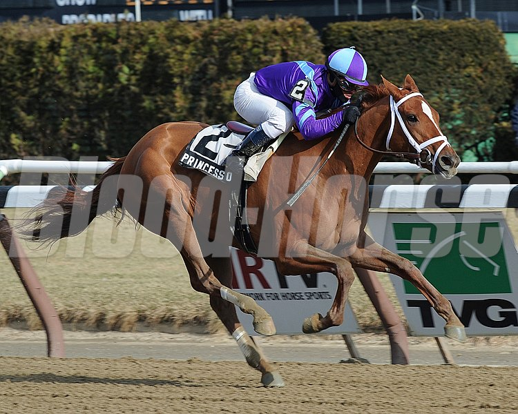 Princess of Sylmar wins the Busher Stakes Jockey: Javier Castellano AQUEDUCT, Ozone Park, NY Purse: $100,000 Date: February 2, 2013 Class: TV: HRTV/TVG Age: 3 yo Race: 4 Distance: One And One Sixteenth Miles Post Time: 1:54 PM Photo by: Adam Coglianese / NYRA