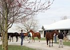 Keeneland April 2-year-olds in training sale.