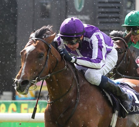 His victories include the Emirates Airline Breeders' Cup Turf, Investec Diamond Jubilee Coronation Cup (three times), Racing Post Trophy, and Dubai Sheema Classic Presented by Longines, all grade/group I events.