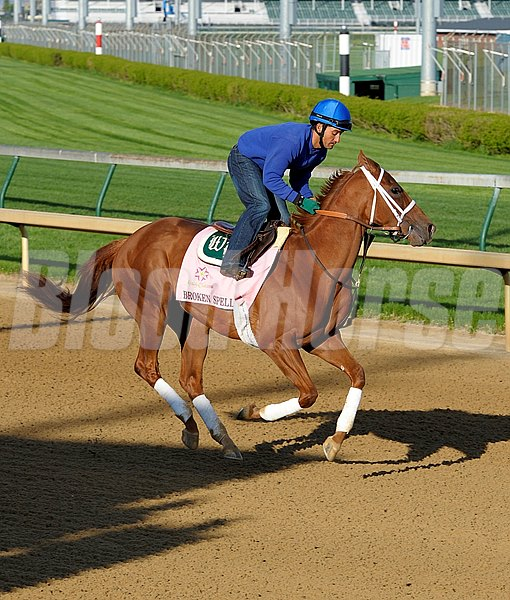 Broken Spell works at Churchill Downs on Sunday morning April 21 in preperation for the 2013 Kentucky Oaks.