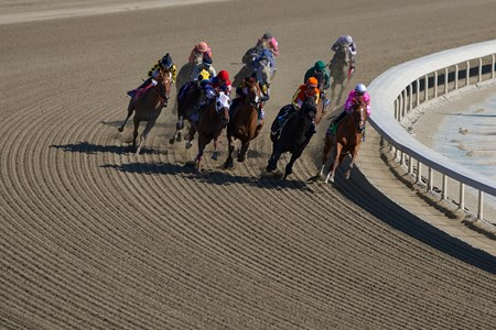 The field of the Breeders' Cup Filly & Mare Sprint (gr. I) entering the backstretch.
