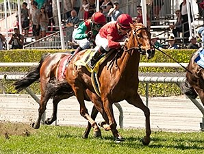 Queen of The Sand wins the 2015 Santa Barbara Handicap.
