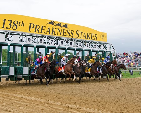 Start of the 2013 Preakness. winner Oxbox breaks from the 6 stall.