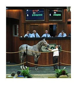 Hip 75, a son of first-crop sire Concord Point, one of 2 colts to sell for $250,000.
