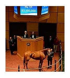 Princess of Sylmar, Hip 125, sells for $3.1 million at the F-T November Sale.