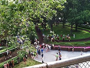 Delaware Park Restricts Picnic Grove Items