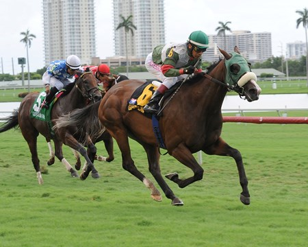 Madame Giry captures the Bob Umphrey Turf Sprint Stakes at Gulfstream Park.