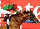 Animal Kingdom wins the Dubai World Cup