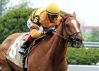 Wise Dan began 2012 with a win in the 1/8 mile Ben Ali Stakes (gr. III) on the Polytrack at Keeneland on April 22.