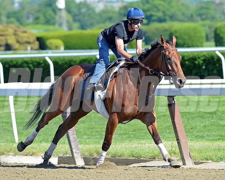 Caption: Beholder works