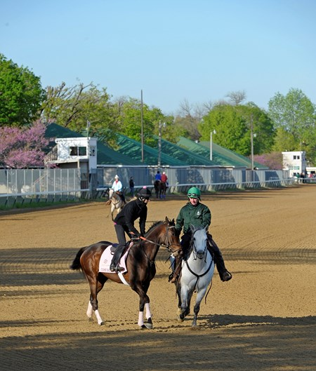 Caption: Close Hatches with Jo Lawson stays with the pony until she starts her work.