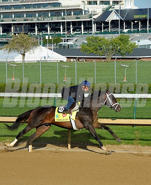 Verrazano works at Churchill Downs on Sunday morning April 21 in preperation for the 2013 Kentucky Derby.