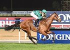Dolniya streaks to victory in the Dubai Sheema Classic.