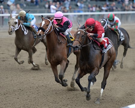 Glorious View wins the 2013 Vagrancy Handicap at Belmont Park.