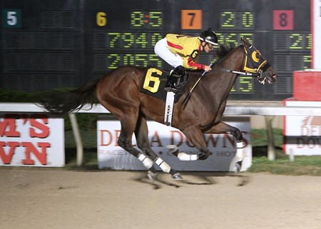 Heitai set a new track record at Delta Downs this weekend crushing his opponents by 18 3/4 lengths.