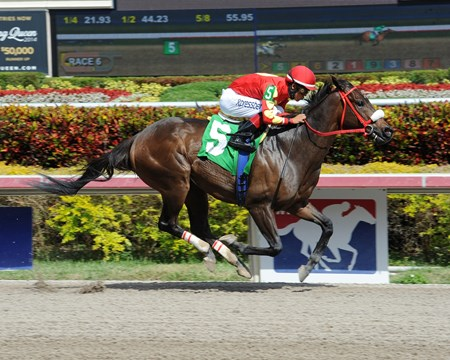 Evolution Rocks rides to victory in the 6th Race at Gulfstream Park.