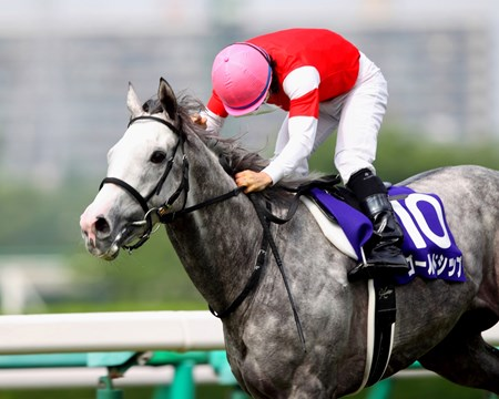 Dual Japanese classic winner Gold Ship earned a Breeders' Cup Turf (gr. IT) berth when shaking off Gentildonna and charging past leader Danon Ballade for a clear win in the Takarazuka Kinen (Jpn-I) June 23, 2013 at Hanshin Racecourse.