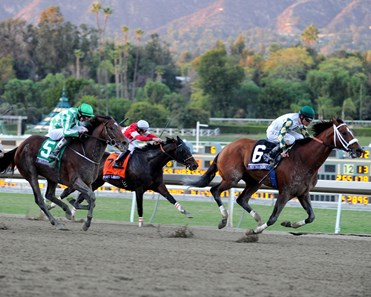 Mucho Macho Man wins the Breeders' Cup Classic.