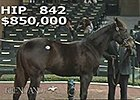 Kee Nov 2014: Hip 842, in the Ring