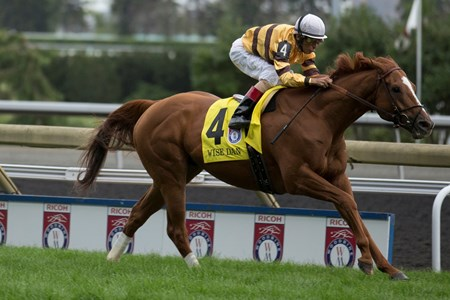 Jockey John Velazquez aboard Wise Dan captures the Woodbine Mile.