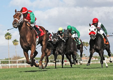 Red Zeus wins the Jack Coady Sr. & Jeff Coady Stakes at Turf Paradise in Phoenix, Arizona.