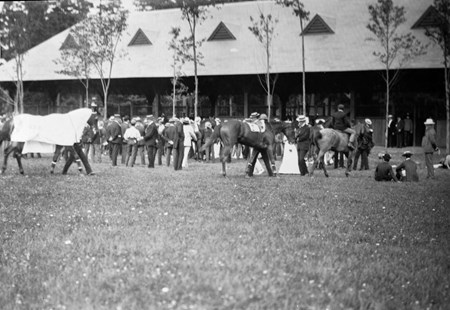 Horses including Delhi and Palmbearer at Saratoga Race Course in 1903.