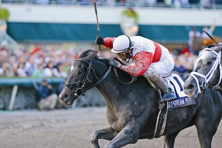 Hymn Book survives in thrilling 2012 Donn Handicap at Gulfstream Park. Hymn Book is trained by Shug McGaughey.