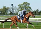 Derby Hopeful Frammento Works at Keeneland