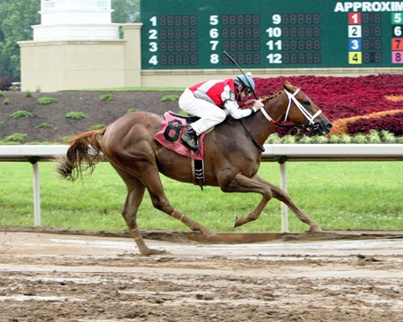 Flip Daddy brings home the bacon in the Hoover Stakes at Belterra Park in Cincinnati, Ohio.