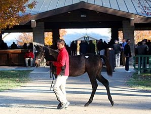Keeneland Nears End with Statistics Still Up