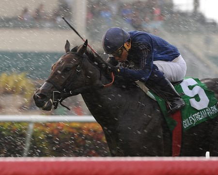 Hubba Shake  flies through the rain to win the Armed Forces Stakes at Gulfstream Park.