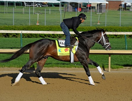 Caption: Verrazano