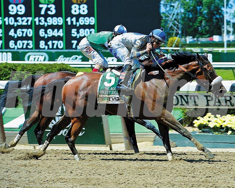Sweet Reason, given a patient ride by Irad Ortiz Jr., came from off the pace to register her second grade I victory in the $750,000 TVG Acorn Stakes at Belmont Park.