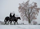 Thoroughbreds train early at Woodbine as snow fall grips Toronto for the first time of the season.