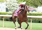 Champion Untapable moved to take charge at the top of the stretch, after rating in fourth early, and drew clear to win the Grade I $600,000 Apple Blossom Handicap at Oaklawn Park.