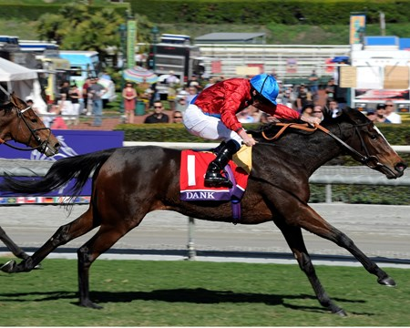 Dank wins the Breeders' Cup Filly and Mare Turf.