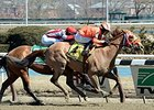 Turco Bravo wins the Stymie Stakes.