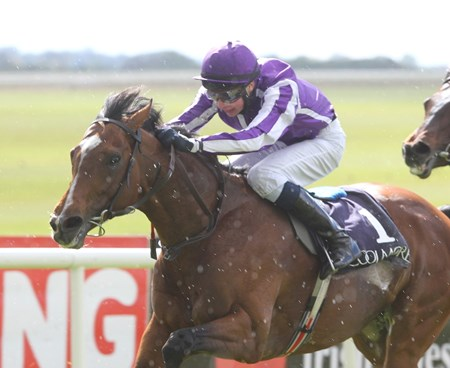 St Nicholas Abbey running in the rain with Joseph O'Brien aboard during the High Chaparral E.B.F. Mooresbridge Stakes 5/7/2012.