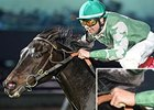 Quiet Acceleration, ridden by Roman Chapa, won the Richard King Stakes on Jan. 17.