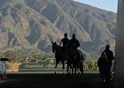 Breeders' Cup News Minute - 10/30/2013