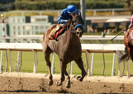Westrock Stables' Secret Compass prevailed over favorite She's a Tiger in the $250,000 Chandelier Stakes (gr. I) at Santa Anita Park Sept. 28 for trainer Bob Baffert.