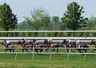 Horse Racing Needs A New Box