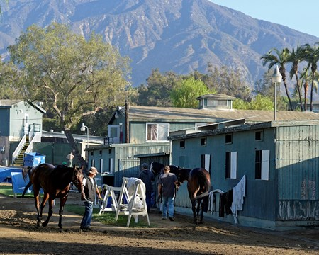 Caption:  barn area scene