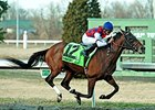 "Dubai Sky rolls to victory in the Spiral Stakes at Turfway Park.<br><a target=""blank"" href=""http://photos.bloodhorse.com/AtTheRaces-1/At-the-Races-2015/i-bpRGWPQ"">Order This Photo</a>"