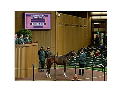 Hip 402, a weanling filly by Tapit, brought $3 million Nov. 5.