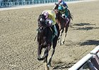 "Condo Commando leads the way home in the Gazelle Stakes.<br><a target=""blank"" href=""http://photos.bloodhorse.com/AtTheRaces-1/At-the-Races-2015/i-rv5mGNV"">Order This Photo</a>"