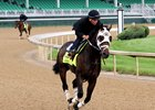 General a Rod in training at Churchill Downs